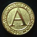 New!  AAEES Lapel Pin