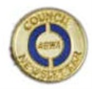 Council Newsletter Pin