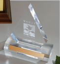 Woman of the Year - Acrylic Award
