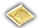 Newsletter  Committee Pin