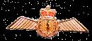 900220 Navigator Lapel Pin Wing  4.5cm x 2.5 cm