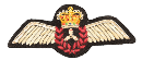 Flight_Engineer Wing