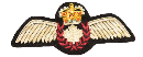 Pilots_Wing
