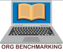 The Risk Management Organization: A Functional Comparative & Benchmarking