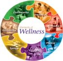 Trauma Informed Care/Behavioral Health 2019