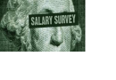 Salary Survey 2010 - 2011